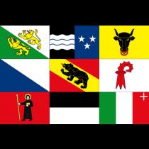 Swiss canton flags 20x30cm