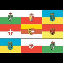 Austria state flags 20x30cm